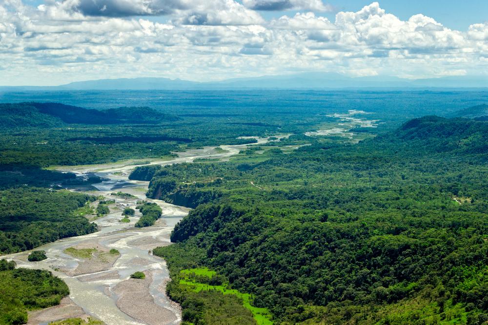 アマゾンの熱帯雨林が目の前に。VRで森林保護に取り組むSCジョンソン