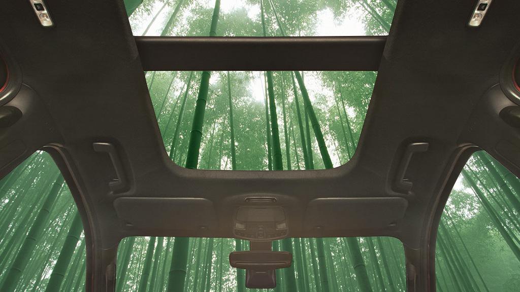 車のインテリアに竹素材を使用へ。フォードの持続可能なイノベーション