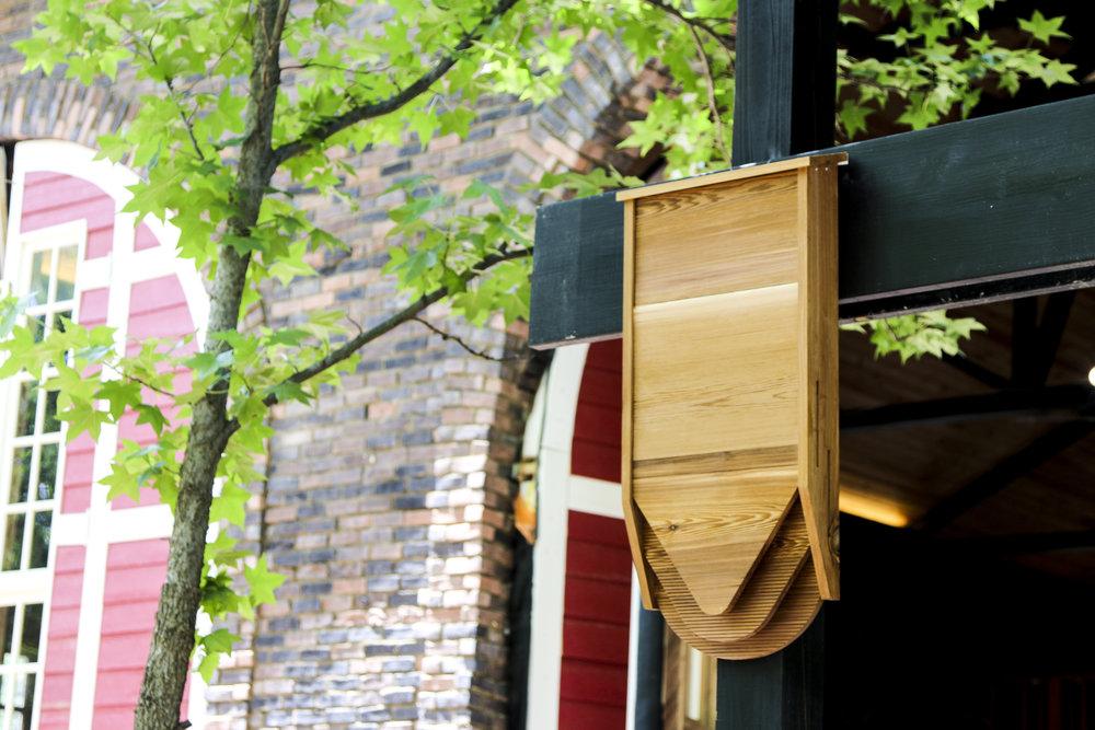コウモリのためのAirbnb。自宅を害虫から守ってくれる「BatBnB」
