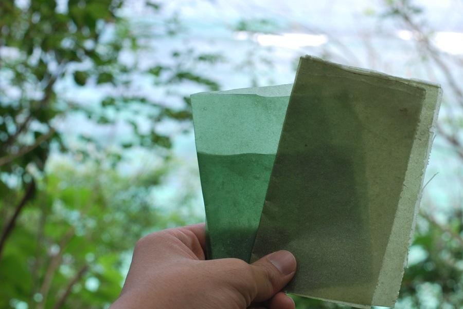 インドネシア発、海藻でできた食べられる包装紙「Evoware」