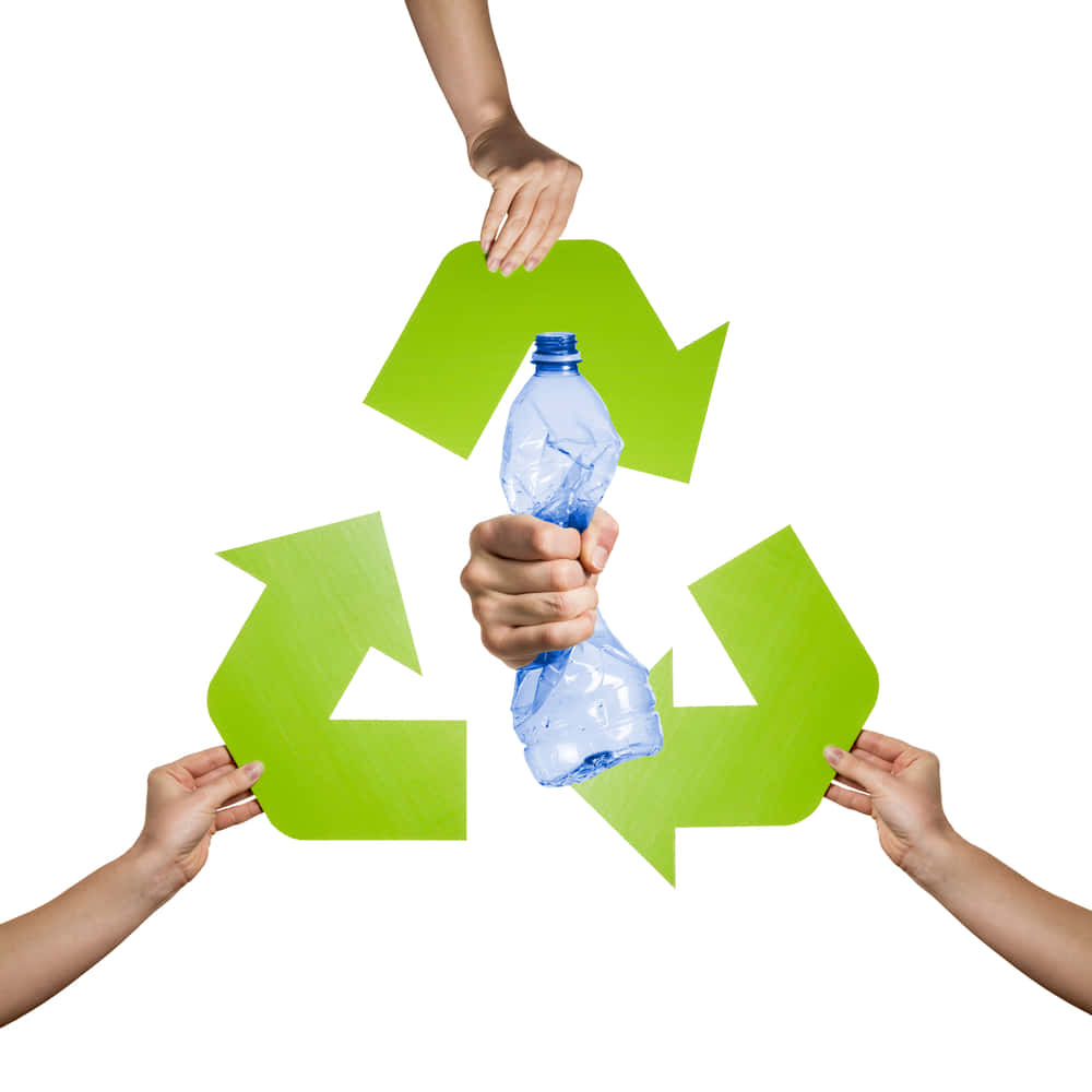 リサイクルされたペットボトル