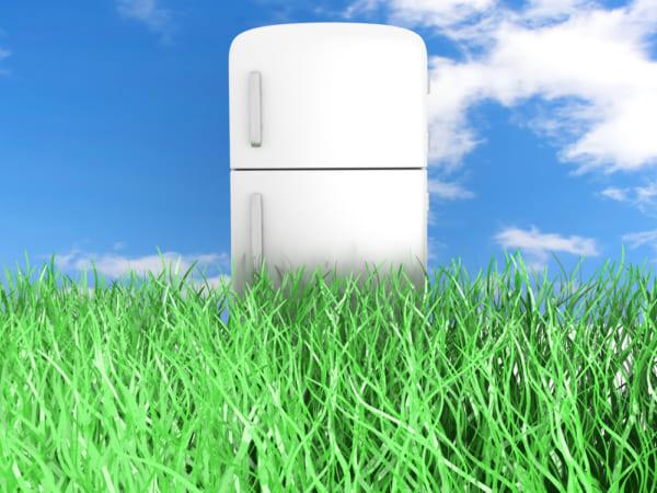 草原の中に立つ白い冷蔵庫