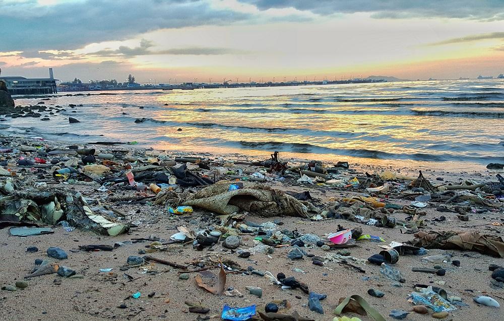 廃棄物ゼロに取り組むオークランド