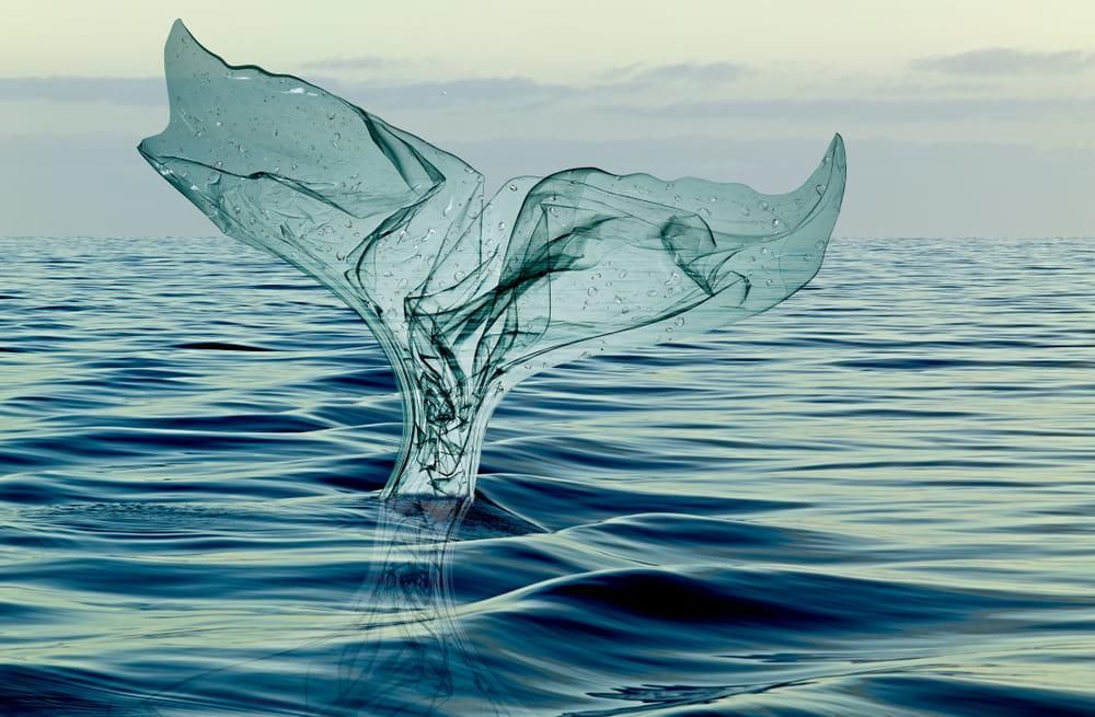 海洋プラスチックを燃料に変える海洋清掃コンテナプロジェクト「PlastBug」