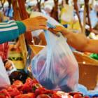 年間32億枚のゴミを無くそう。 南米初、チリで法的にビニール袋の利用を禁止