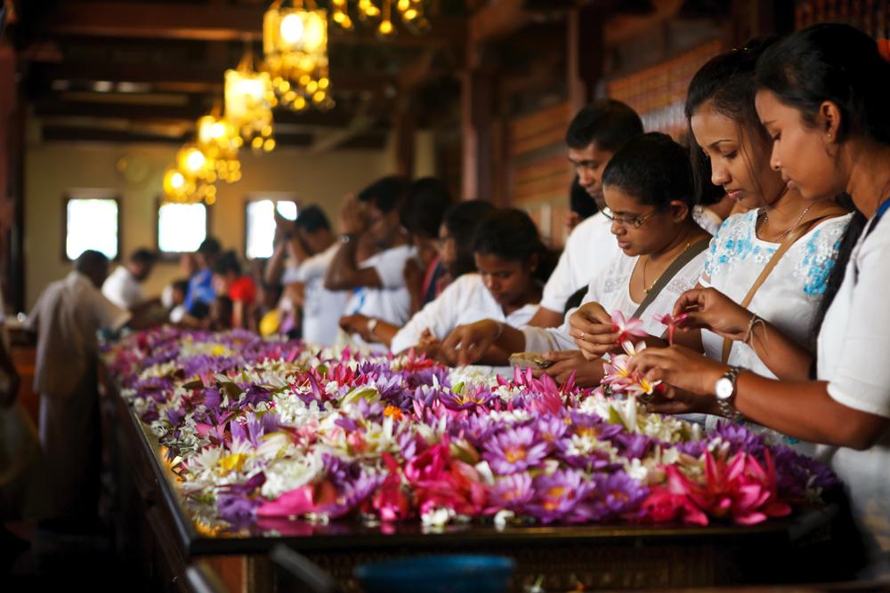 スリランカの大量に捨てられていた花で作る塗料「Petal Paint」
