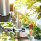 """農業の人手不足解消へ。24本の""""腕""""でいちごを収穫するロボットが登場"""