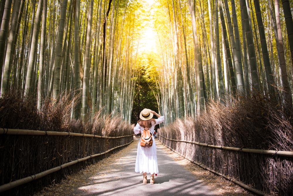 「旅するCEO」を募集する旅行会社「Noken」