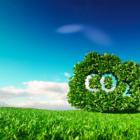 地球の時間を巻き戻す?オーストラリアの大学が、CO2を石炭に変えて地中に戻す技術を開発