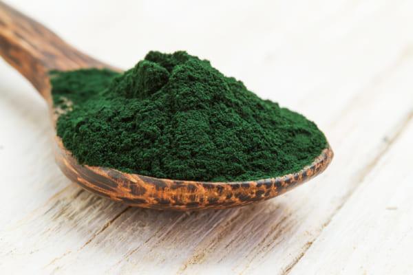 藻類のバイオ燃料