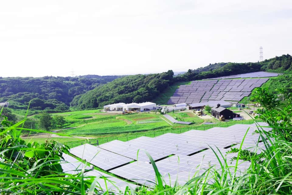農業施設に電気を送るソーラーファーム