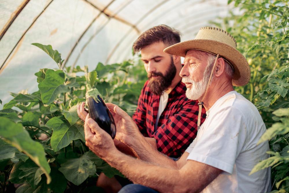 農家と企業を直接つなぐオンラインプラットフォーム「Full Harvest」
