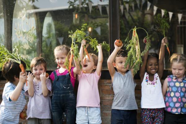 野菜を育てる子供たち