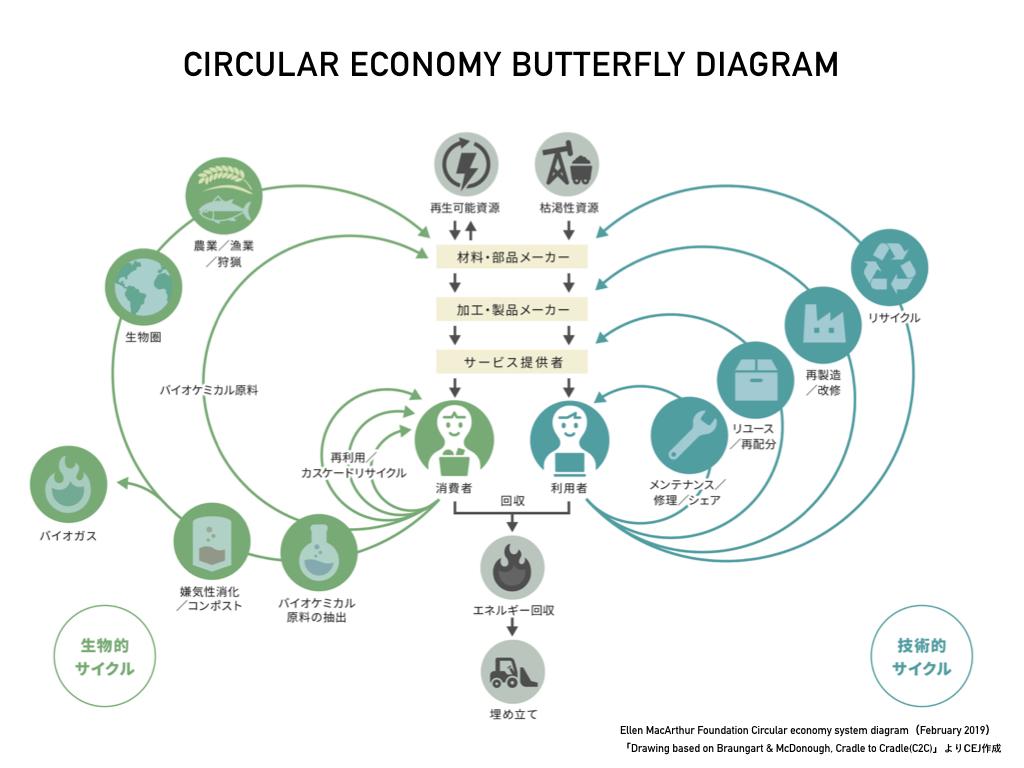 butterfly-diagram