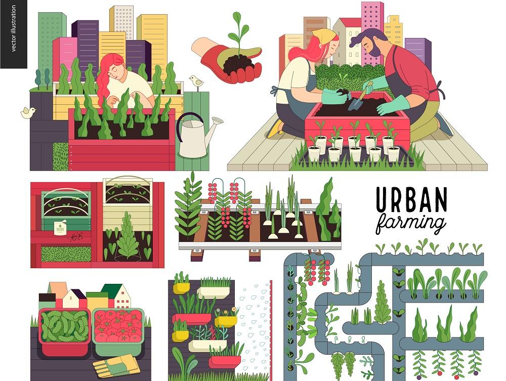 都市型農業