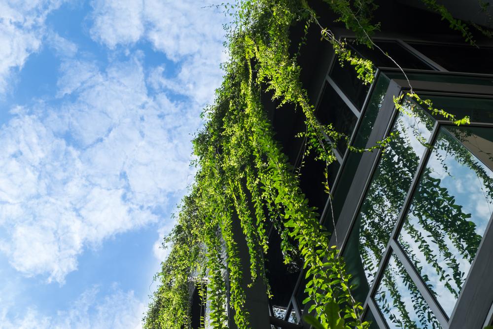 パリ発、世界最大の屋上農園プロジェクト