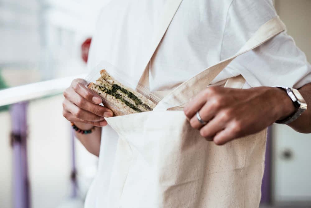 魚の鱗や皮でつくる生分解性バイオプラスチック