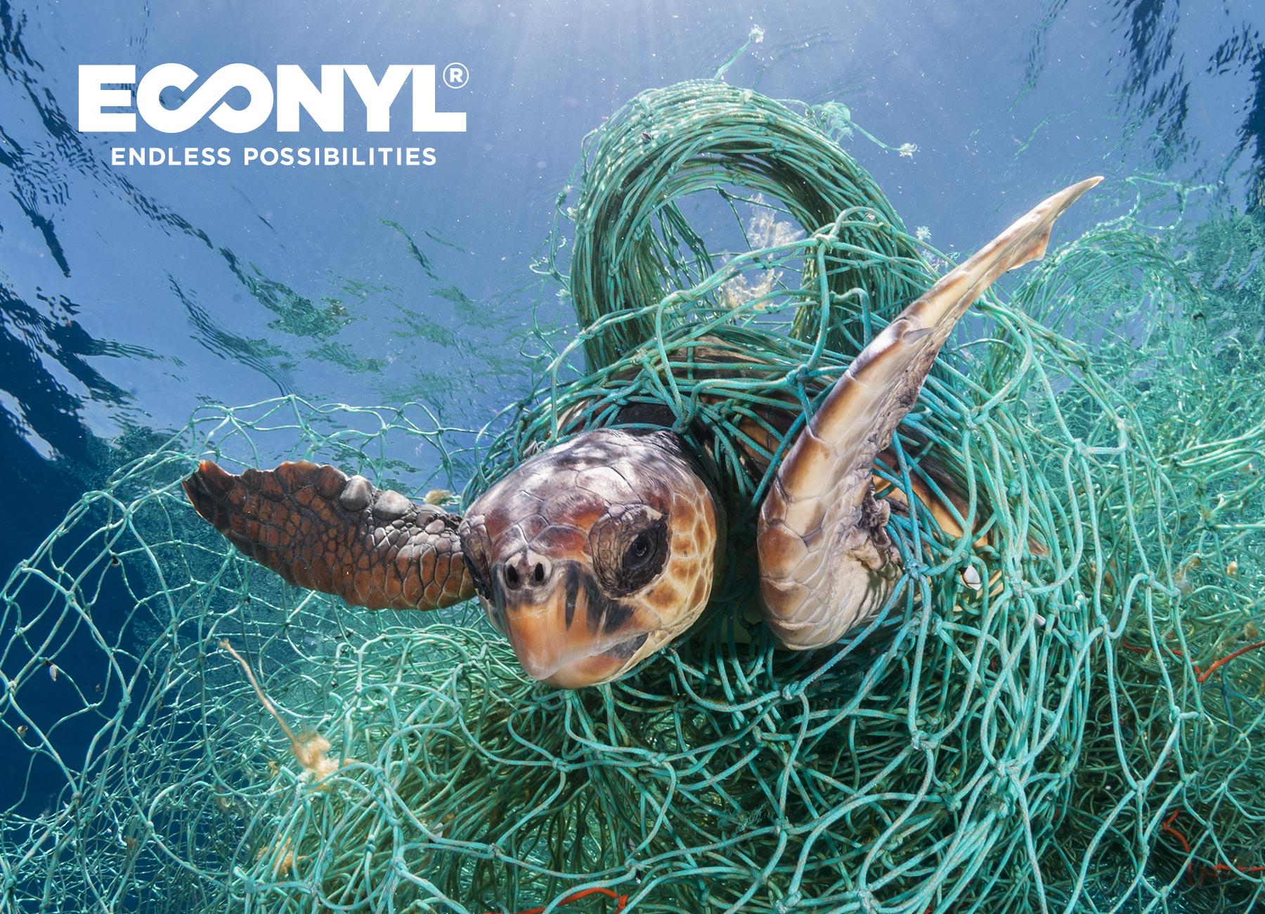 ECONYL®_turtle
