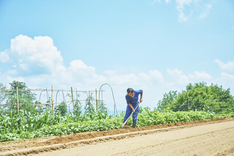 安曇野の農家