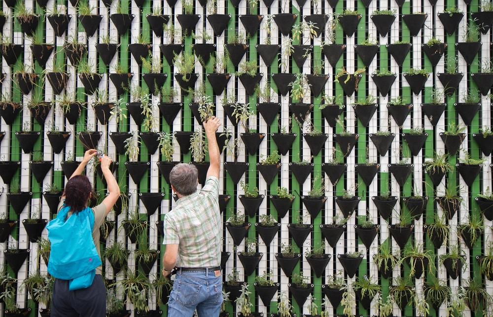 効果的な植林を技術で実現するオランダ発スタートアップ「Land life company」