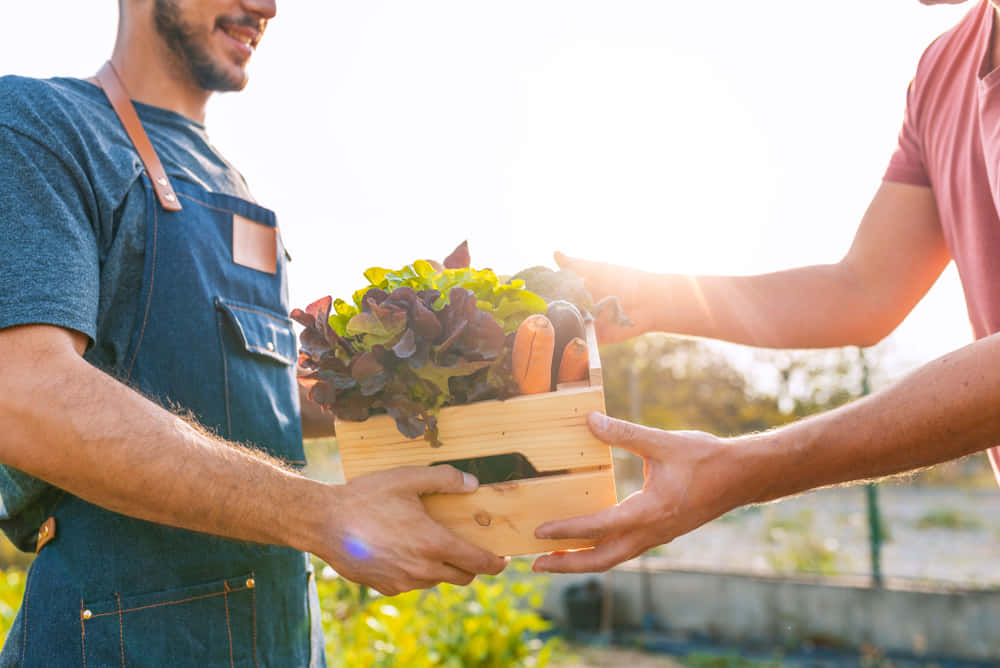 farmer and consumer