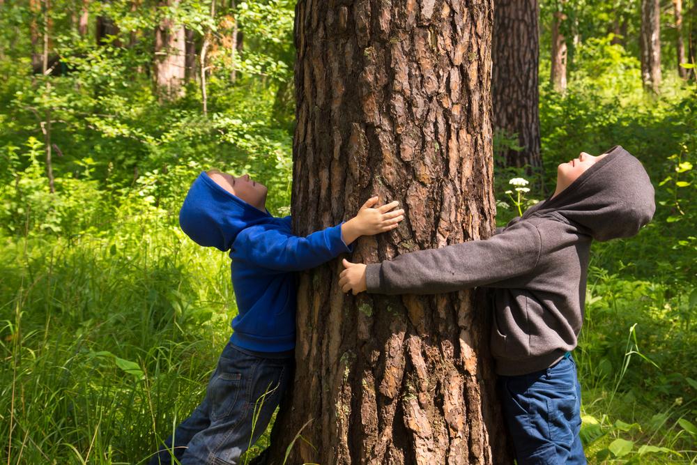 子供が木に抱きついている