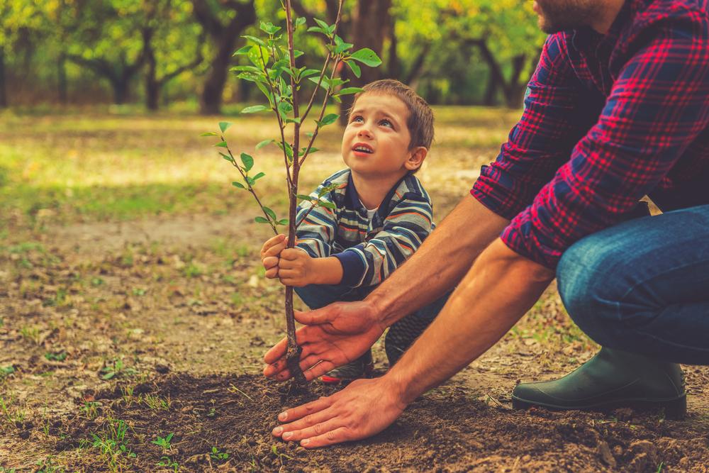 親子が木を植えている