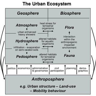 都市生態学説明