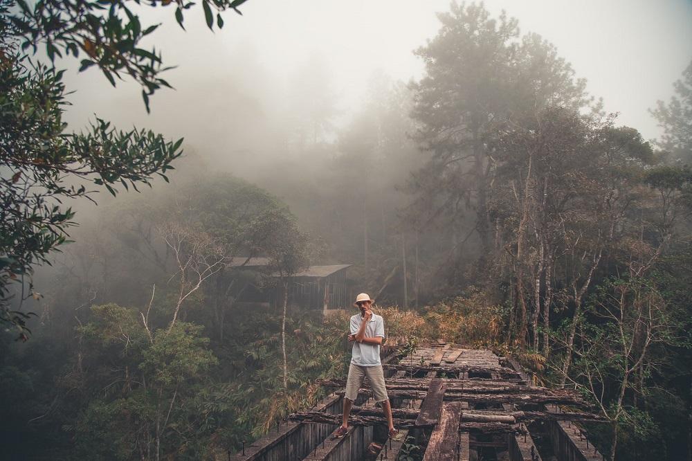 熱帯雨林の途上国にも電力を。大気中の水蒸気から電気をつくるイスラエルの研究