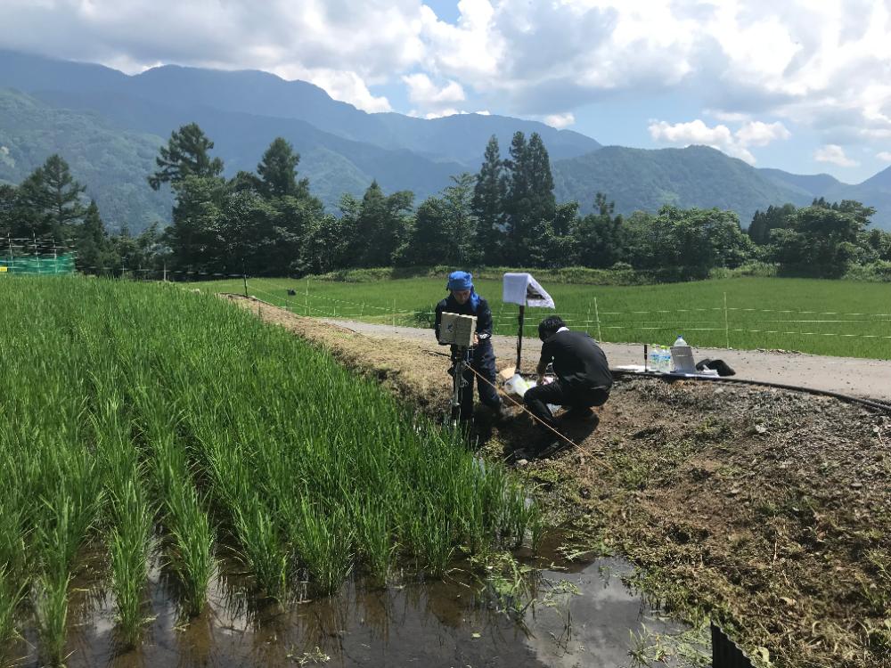小谷村での実証実験の様子