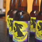 食品ロスをビールで解決。北海道の廃棄野菜からできるサステナブルなクラフトビール