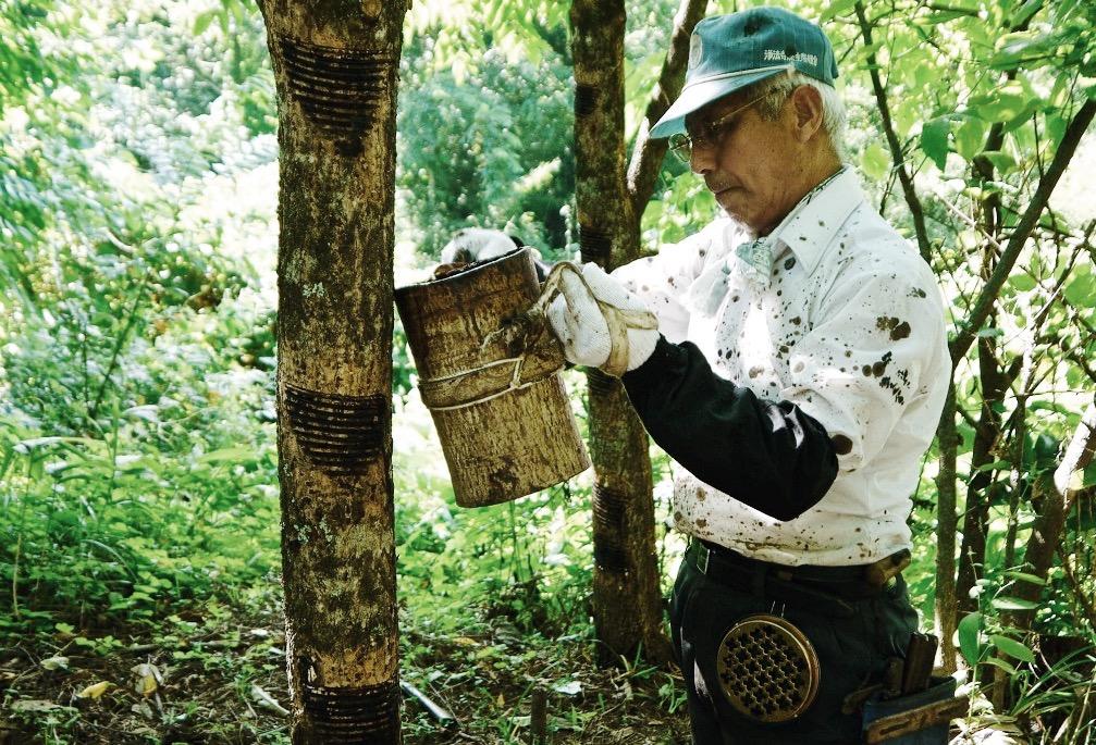 環境・伝統・ヒトを育てる千舟堂が展開する「輪島塗食器」
