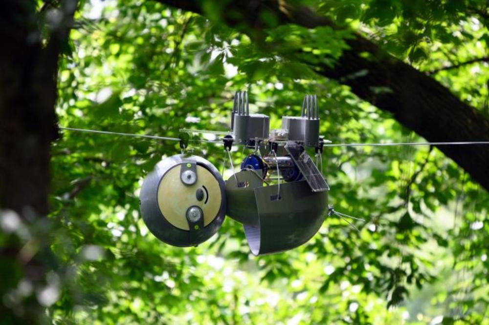 絶滅危惧種を救う「超スロー」で動くナマケモノロボット