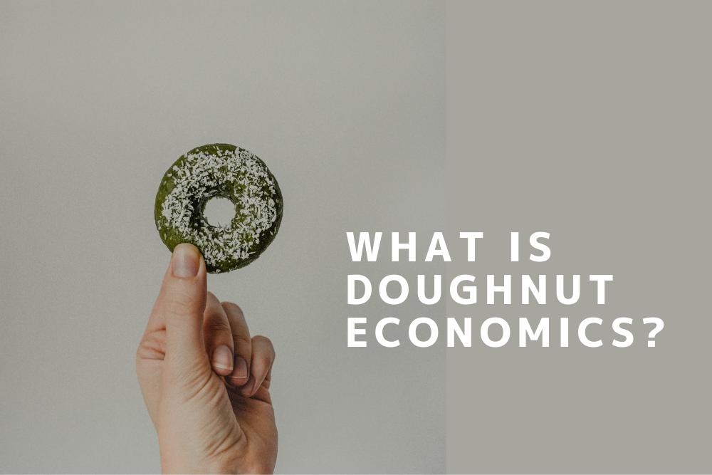 経済 学 ドーナツ