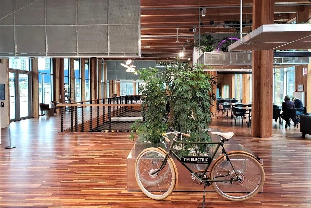 天井・壁・床に再利用素材を使ったオフィス
