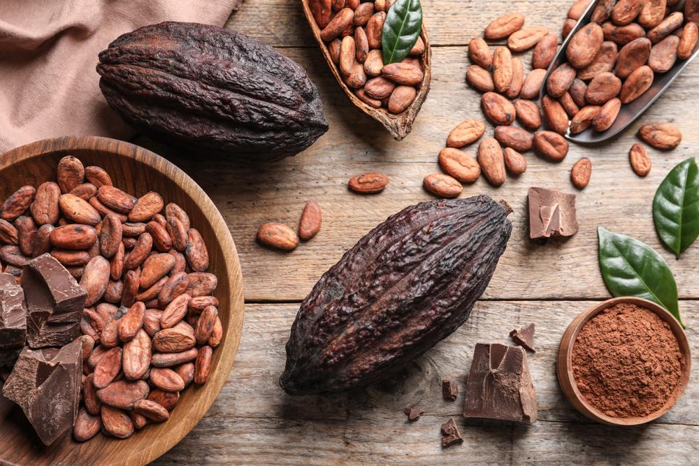 カカオ豆とチョコレート
