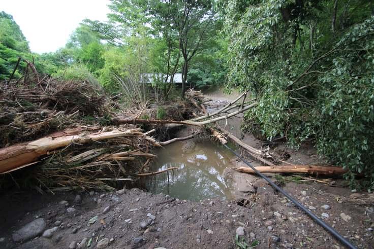 キャンプ場内の倒木被害