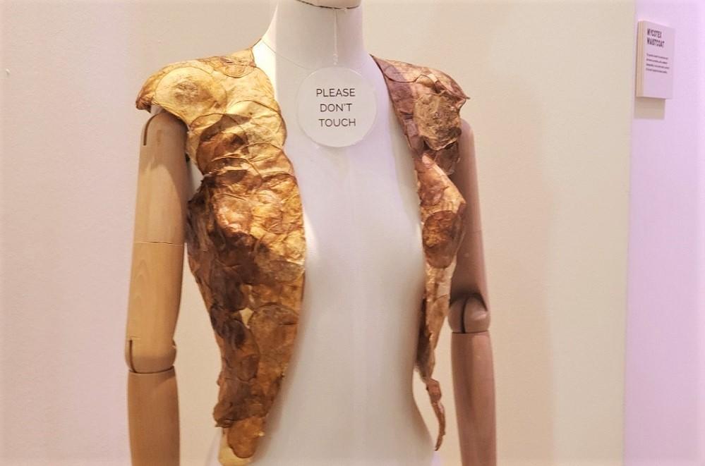 キノコでできた次世代の衣服