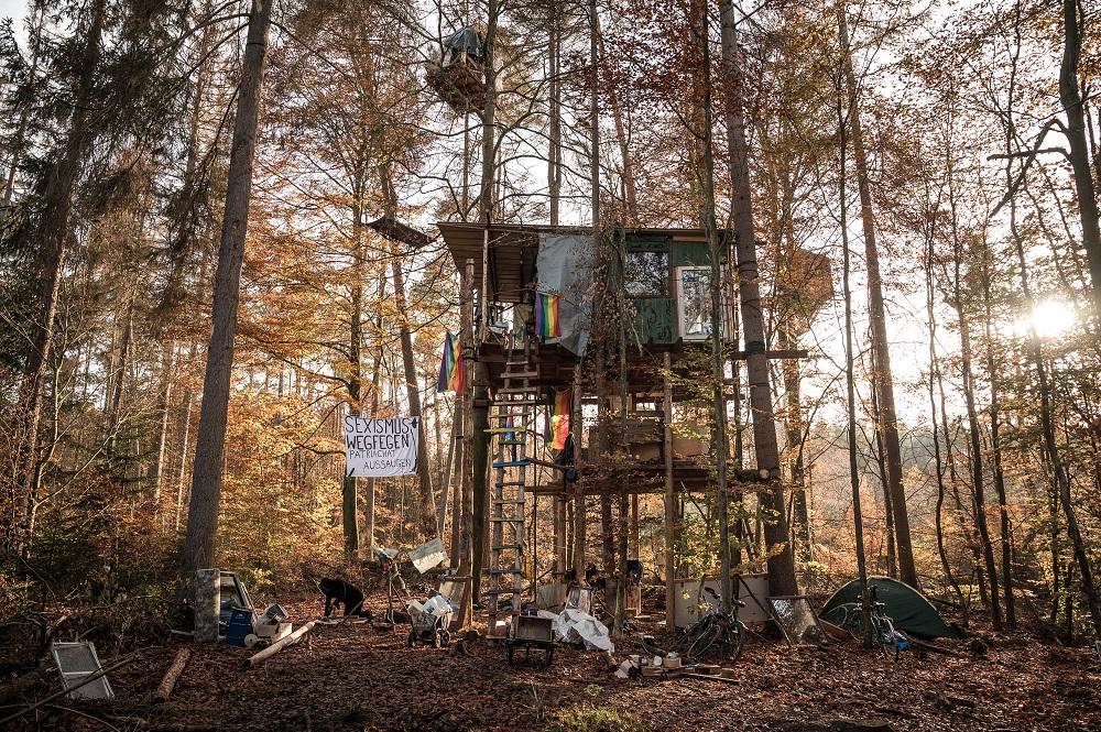 一から自分たちの手で築き上げたツリーハウス。