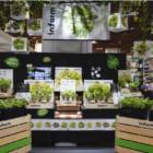 ドイツ発、店内で野菜を育てる垂直農業テック「Infarm」都内スーパーに展開