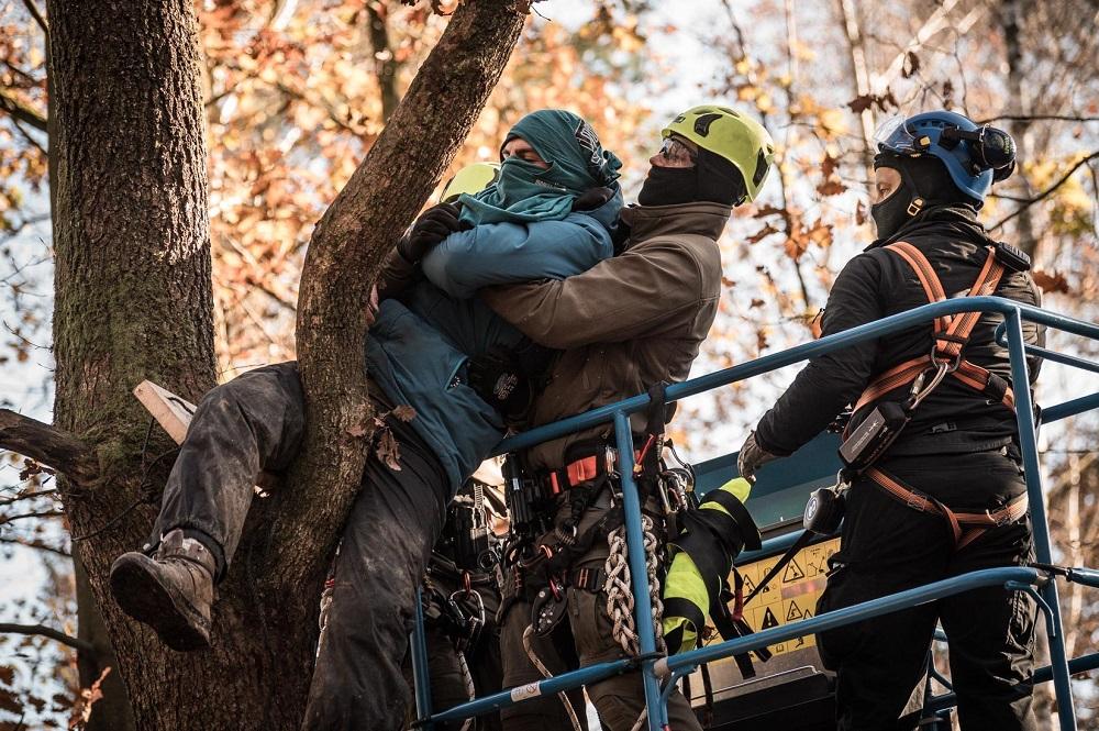 樹上より引き降ろされるアクティビスト。Photo by Tim Wagner