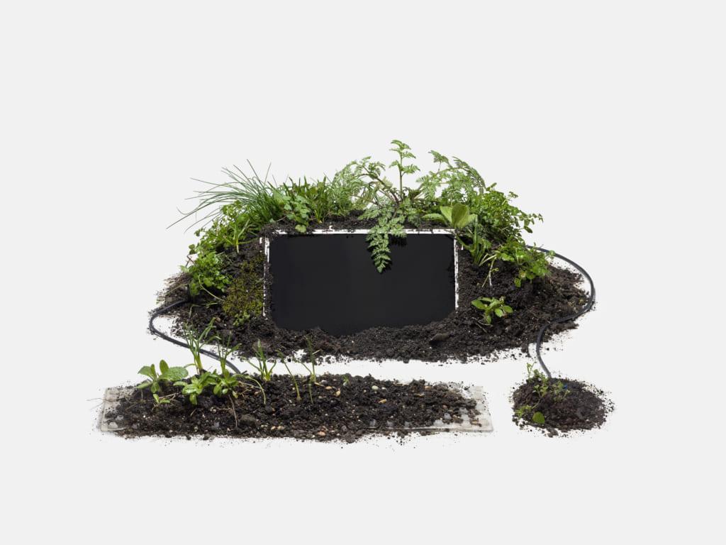 草でできたパソコン