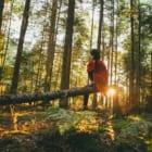 森林破壊を止める。世界の森にテレポートできる、デジタル森林浴ラジオ「tree.fm」