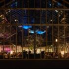 アムステルダムの「メニューのない」温室レストラン