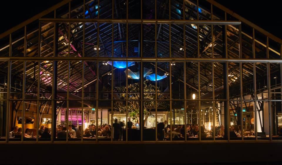 日が落ちてからはぐっと大人の雰囲気を増す店内。一部を仕切れるバーや夏のテラス席などもあり、家族や友人との食事だけでなく企業イベントなどにも利用できる。