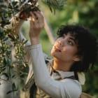 人・生物・土壌の関係を捉え直す。リジェネラティブ農業の事例3選