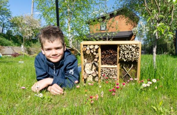 ハチを家の庭で育てる