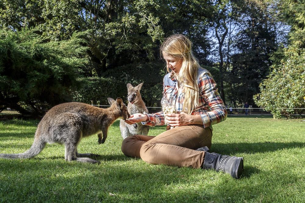 オーストラリア政府観光局が提唱する新しい旅のスタイル「コンシャストラベル」