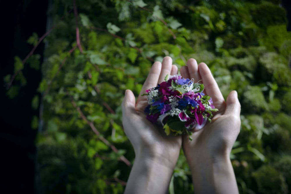大自然をそのまま感じられるデザート『山口農園の花のタルト』