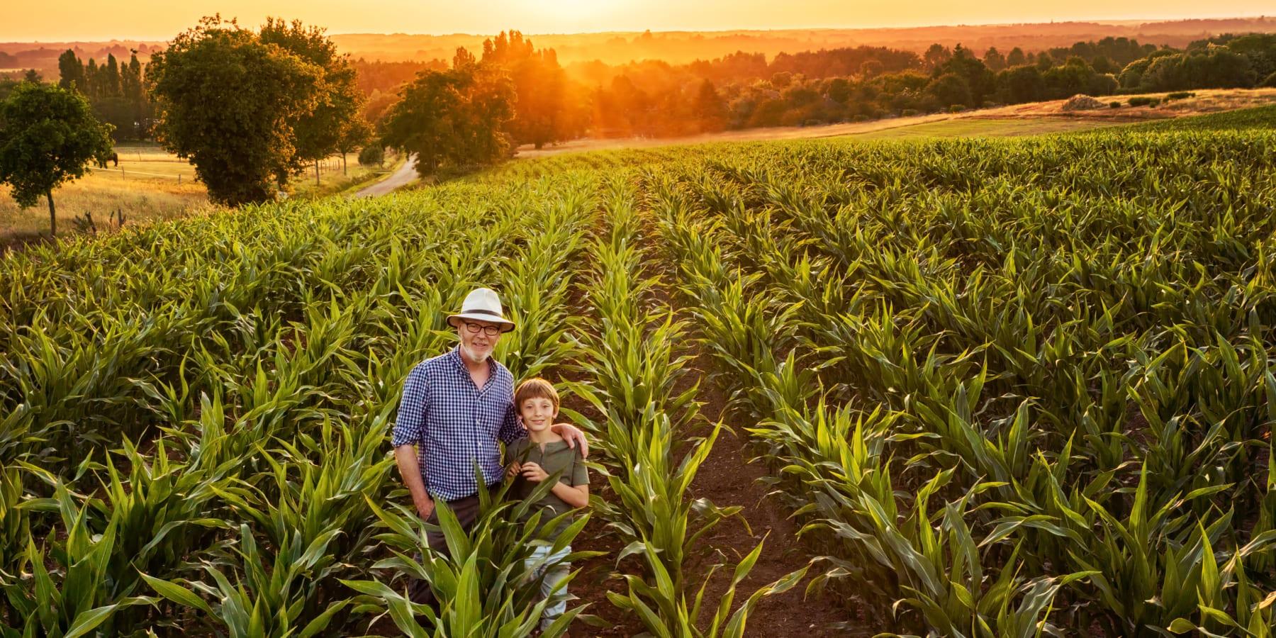 農地に住まずにリジェネラティブ農場を所有できる投資プログラム